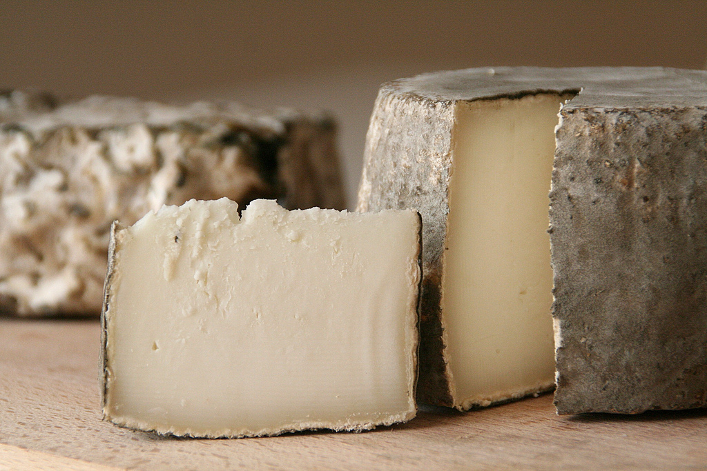 Cabrales Cheese-spanish food in the 21st century-foods from spain-instituto cervantes-blanca valencia-quesos-spain-spanish cuisine -Garrotxa Cheese